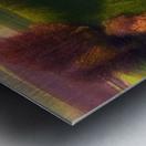 Green fields Metal print