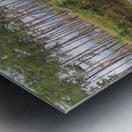 Sky, Water & Trees Metal print
