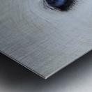 Mirada azul Metal print