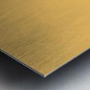 Der Anstreicher Metal print