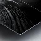 Mercan Metal print