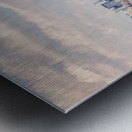 IMG_0295 Edit Metal print