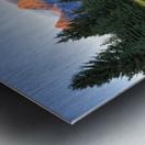 Beavers View of Tetons Metal print