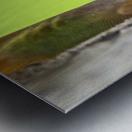 IMG_1264 Metal print