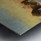 Newport Metal print