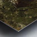 Fabrique dans le Valais Metal print