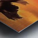 Soaring High Metal print