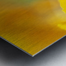 Yellow Poppy Metal print