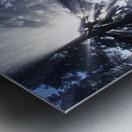 Sunbeams Through Pine Trees Metal print