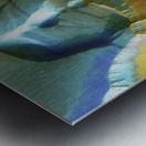 Mars Aerial View Metal print