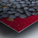 A bowl of blueberries;Alaska united states of america Metal print