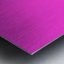 Fascia Metal print