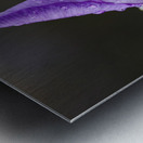 Close up of Iris; Quebec, Canada Metal print