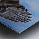 Majestic Eagle  Metal print
