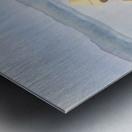 Girl in Rowboat Metal print