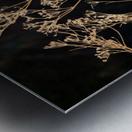 Natures Lace Metal print