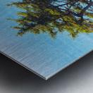Cliffhanger Metal print