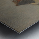 A farmhouse Metal print