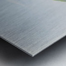 Segesta 1828 Metal print