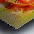 Illustration Of Tomato Metal print