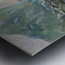 Capri Metal print
