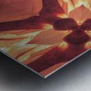 IMG_1565 Metal print