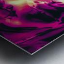 closeup pink rose texture abstract background Metal print