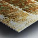 Hawaii, Oahu, Close-Up Of Coconut Palm Tree Bark Texture. Metal print