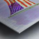 freedomIsnofree Metal print