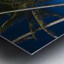 USA, Hawaii, Oahu, Palm tree over Pacific ocean with Mokulua island in background; Lanikai Metal print