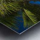 USA, Hawaii, Oahu, Mokulua island in background; Lanikai, Palm tree over Pacific Ocean Metal print