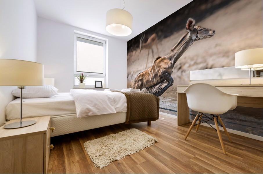 Kudu jump Mural print