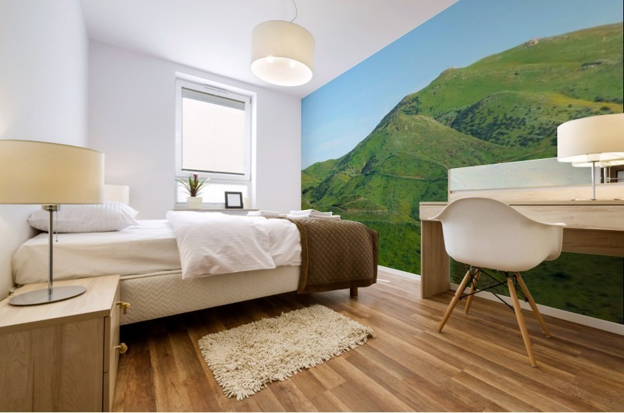 green field and green mountain with blue sky Mural print