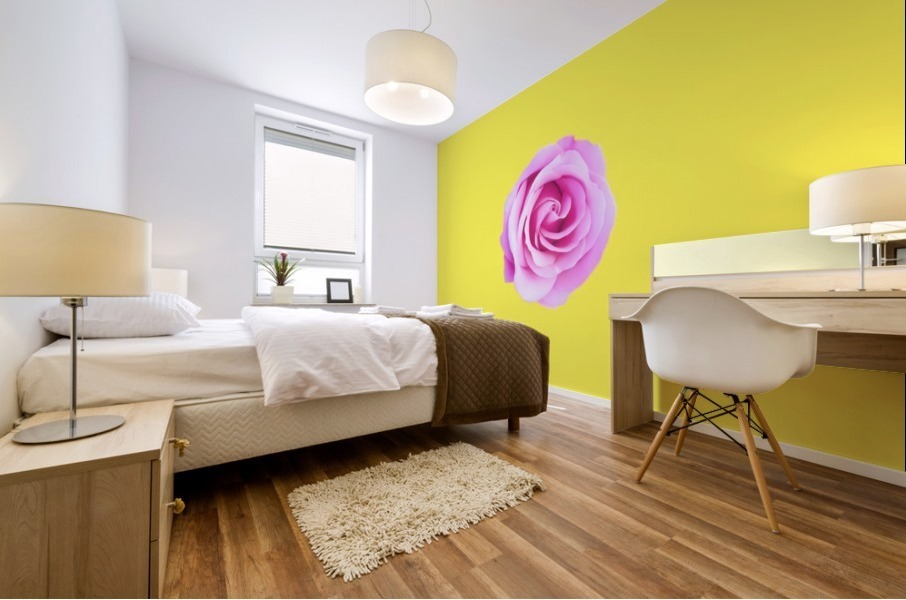 closeup pink rose with yellow background Mural print
