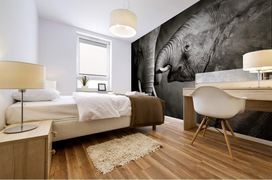 Elephant affection Mural print