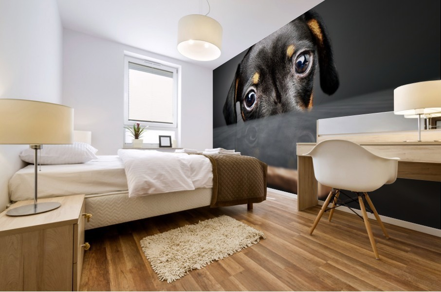 Puppy longing for a treat Mural print