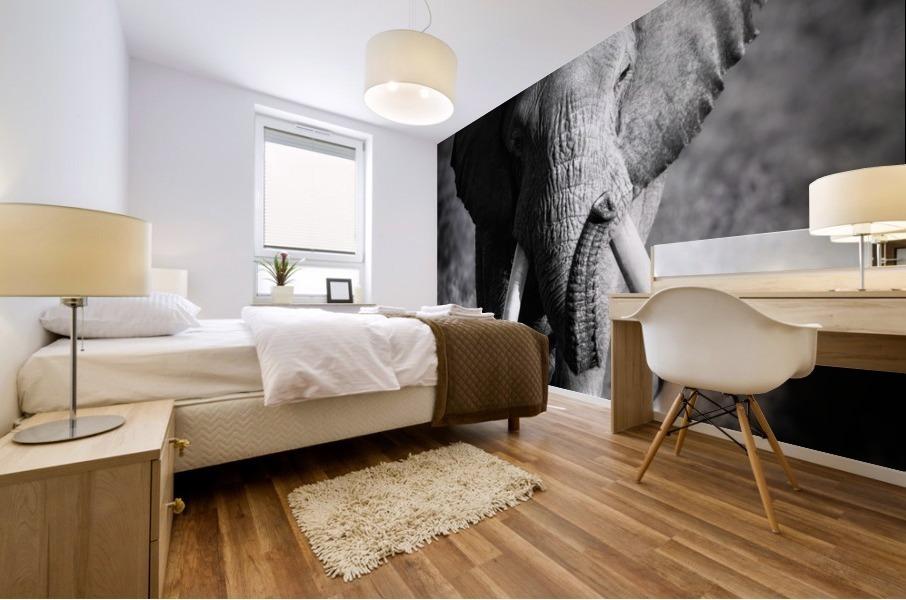 Elephant Bull Mural print