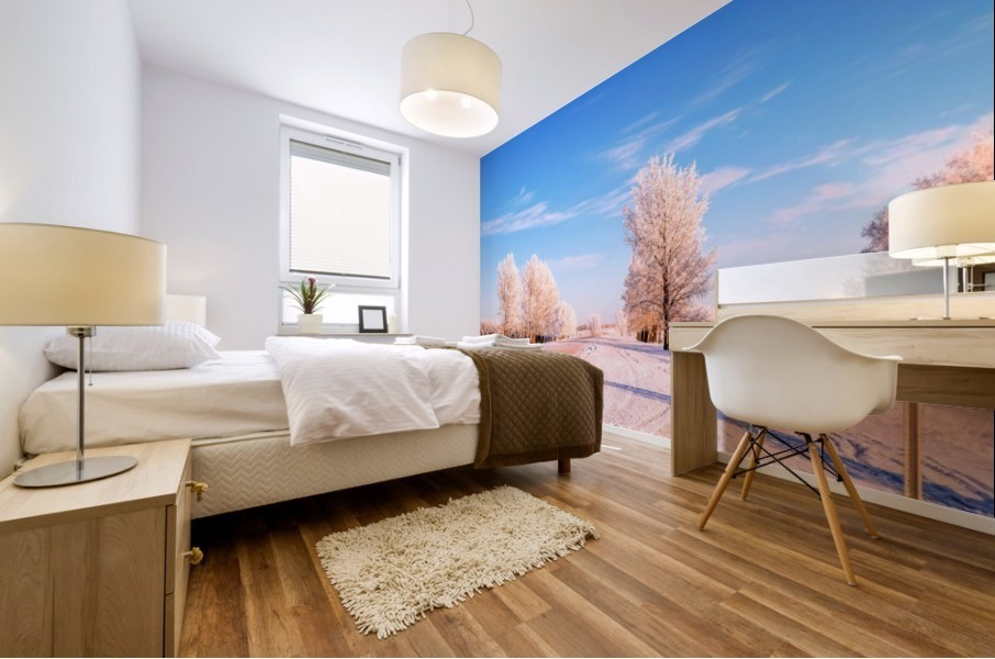 Beautiful, colorful and cold winter with snow and frost Mural print