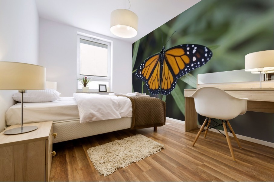 Monarch butterfly Mural print