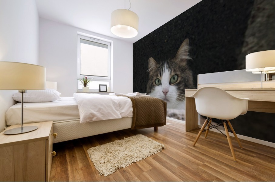 Cat portrait Mural print