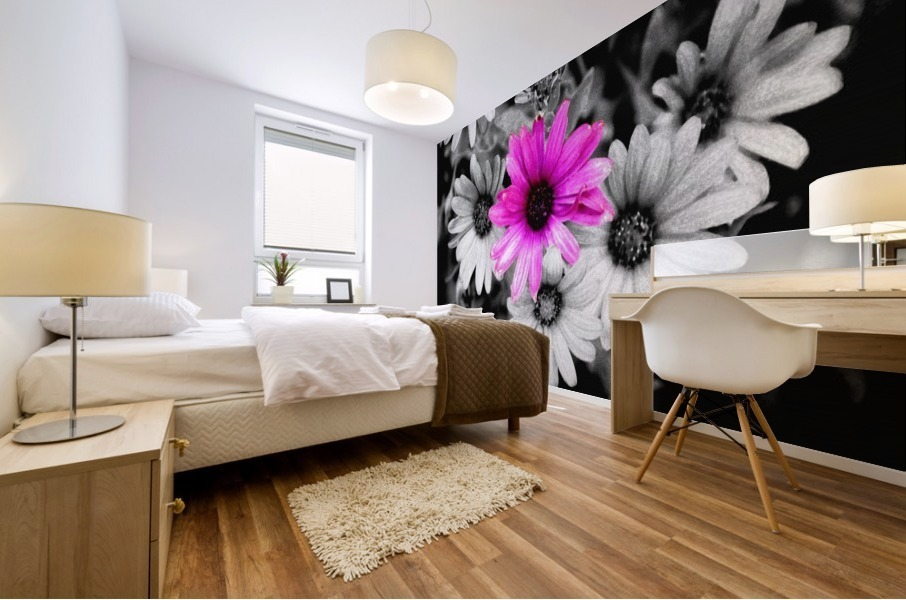One Colored Daisy Mural print