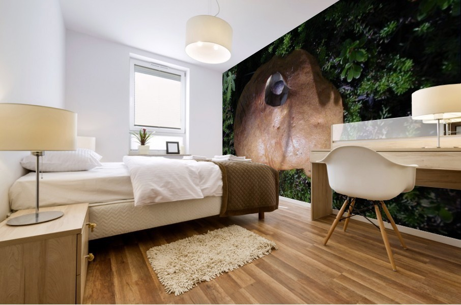 Mushroom Mural print