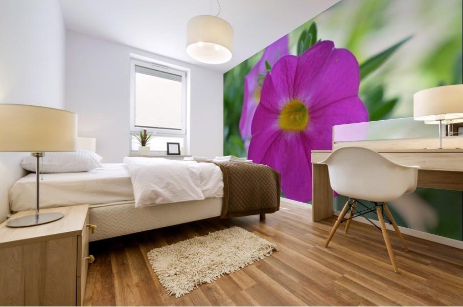 Purple Flower Photograph Mural print