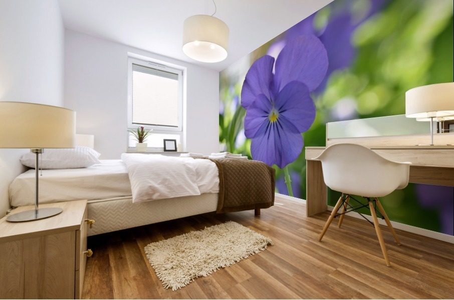 Blue Pansy Photograph Mural print