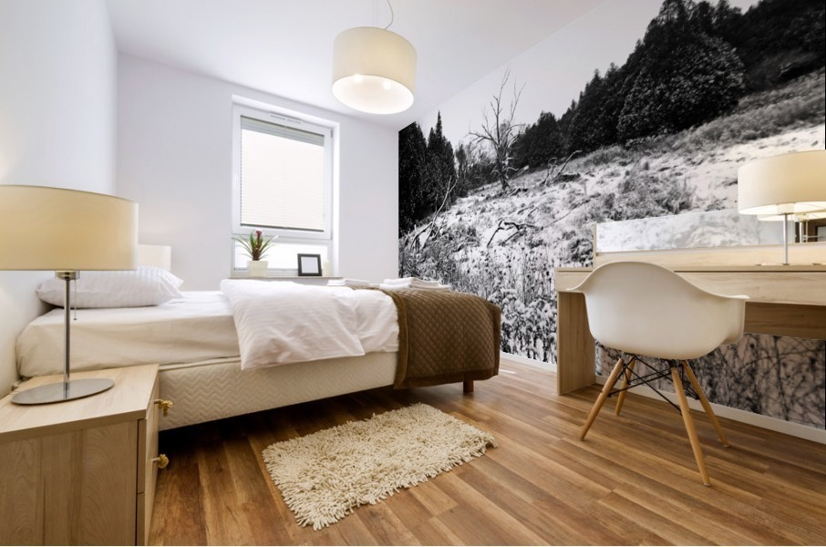 Quiet Winter Black And White Mural print