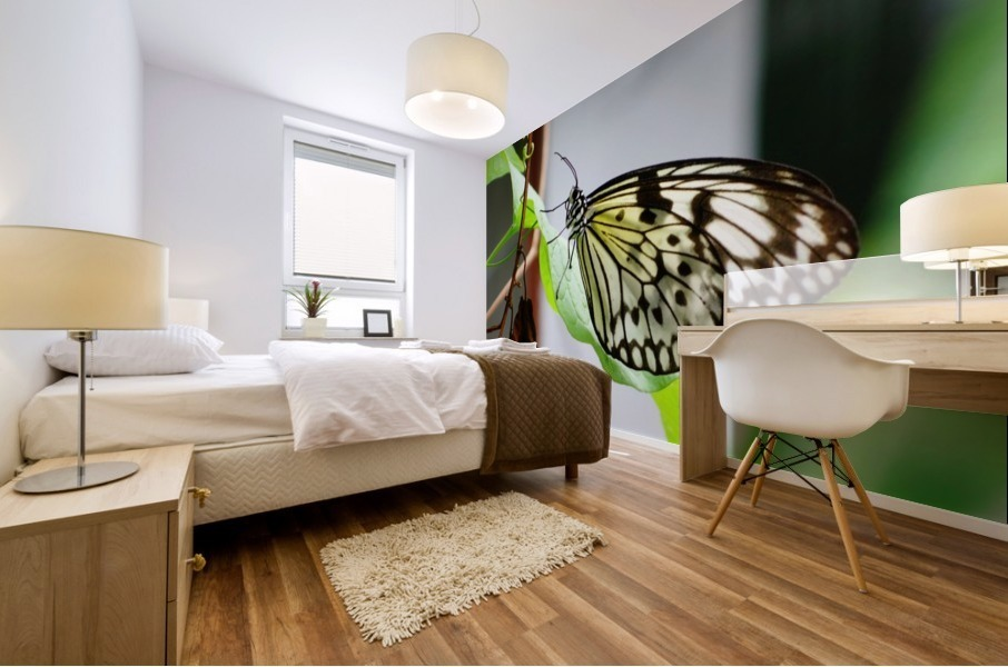 Resting Butterfly Mural print