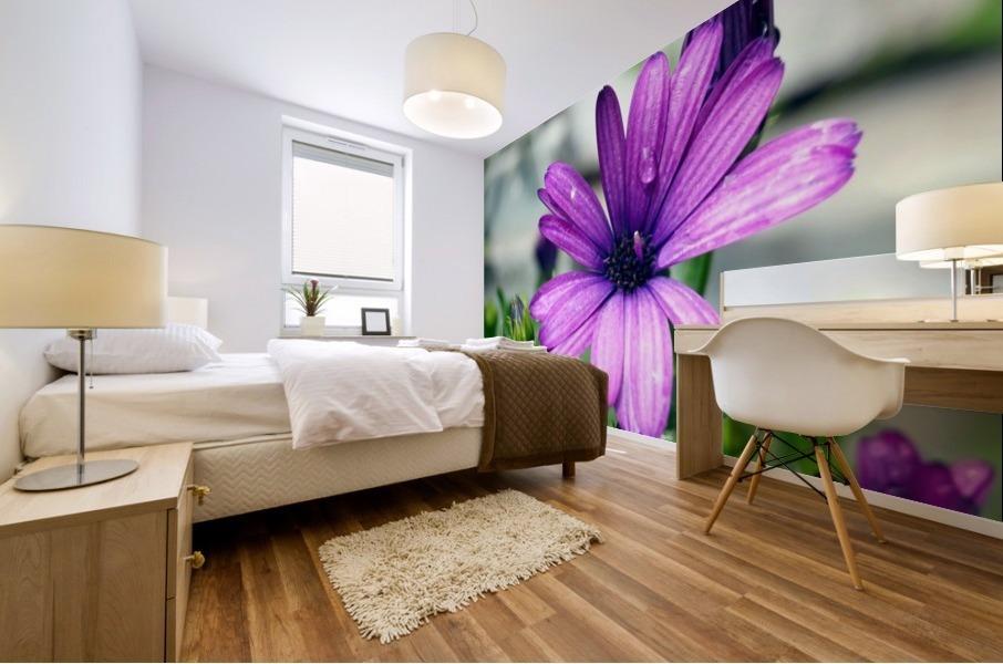 Waterdrop On Purple Flower Mural print
