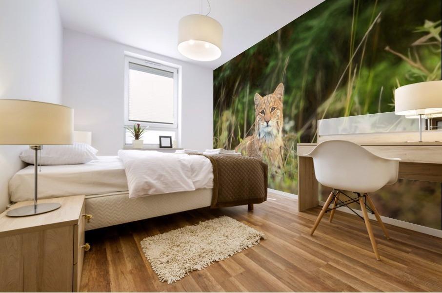 Bobcat Mural print