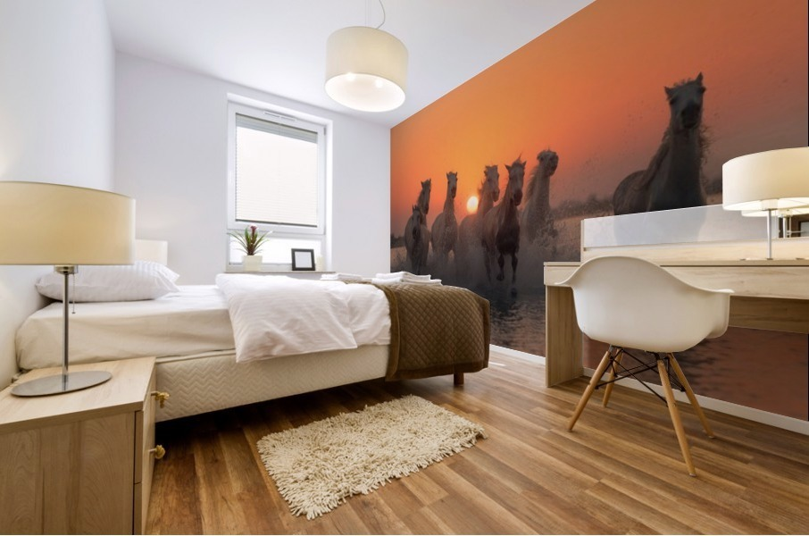 Sunset in Camargue Mural print
