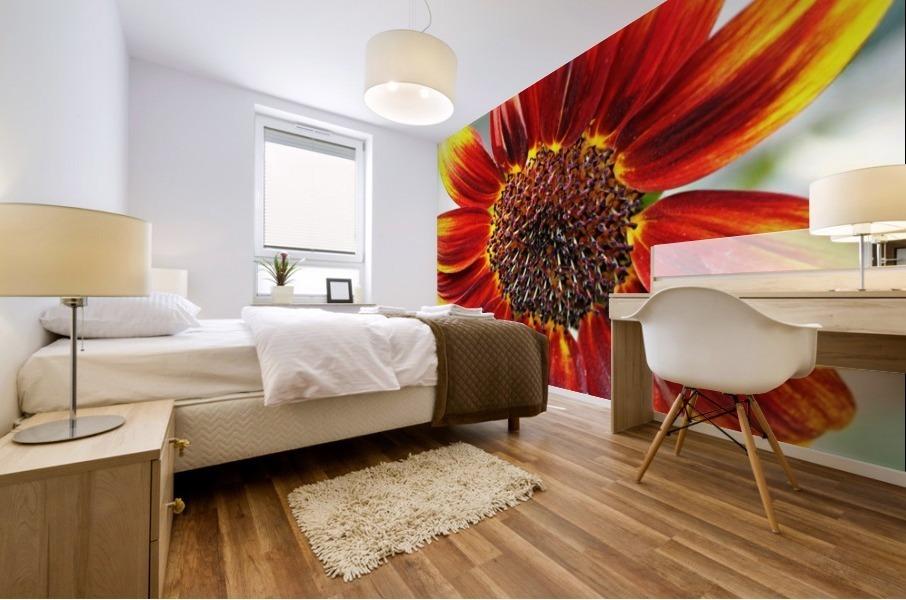Autumn Sunflower Mural print